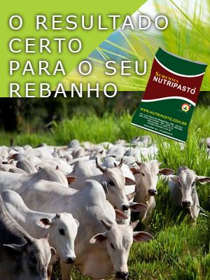 nutripasto_bioseeds